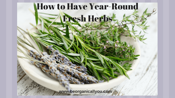 year round fresh herbs