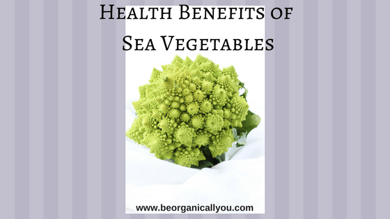 health benefits of sea vegetables