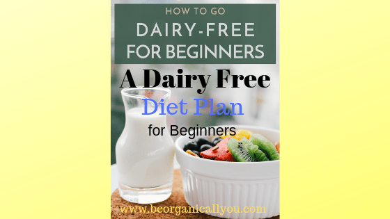 dairy free diet plan for beginners